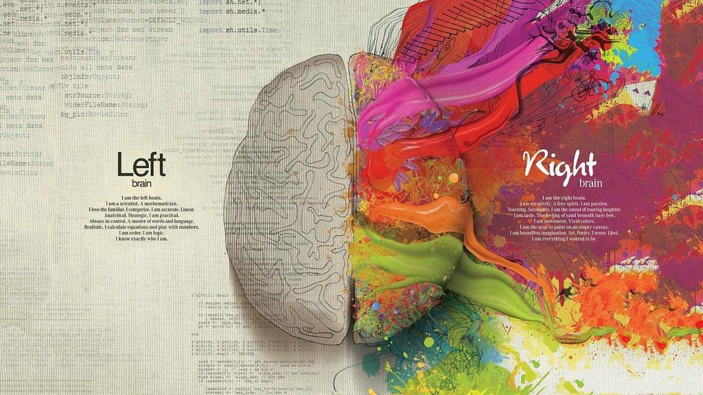 decisions brain